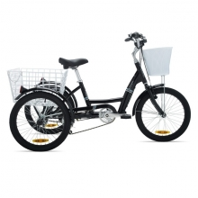 TRICYCLE COLUER CARGO LUX