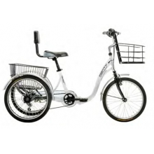Tricycle E-132 36V-12Ah. PANASONIC