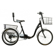 Tricycle E-131 36V - 9Ah. Panasonic