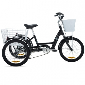 ELECTRIC TRICYCLE COLUER CARGO LUX - 36V 8.8 Ah EFFICIENCED